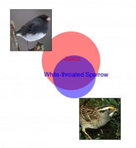 Venn Diagram showing overlap in junco and white-throated sparrow volatile compounds