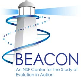 What would the BEACON logo look like if we evolved it for over a billion generations?