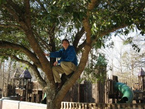 Zack in a tree
