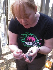Danielle Whittaker sampling junco preen oil