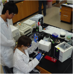 Eric Wei and Lea Drogalis (former high school students) performing preliminary kit tests