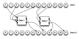 A Markov network with 12 nodes and two Probabilistic Logic Gates (PLGs). Once the nodes at time t pass binary information into the PLGs, the PLGs activate and update the states of the nodes at time t+1.