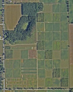 Satellite image of the KBS LTER Main Cropping System Experiment; Photo Credit: SPOT Image