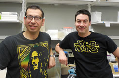Will Soto and Chris Waters glean wisdom from all sources including Bob Marley and Star Wars to study quorum sensing.