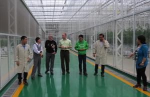 L to R: (greenhouse manager), Prof. Xu, Prof. Goodman, Prof. Runkle, Chenwen Zhu (former BEACON visiting scholar), (greenhouse employee), Prof. Ruihua Wei.