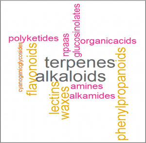 Word cloud of different types of plant specialized metabolites. Size of words is scaled by the log10 of the approx. number of known compounds (Wink, 2010).